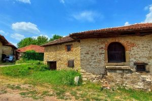 rajacke-pivnice-vila-milenovic-2021-13