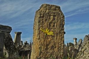 Staro groblje 9