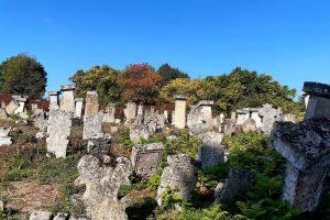groblje-rajacke-pivnice-vila-milenovic-1