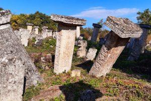groblje-rajacke-pivnice-vila-milenovic-4