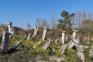groblje-rajacke-pivnice-vila-milenovic-6